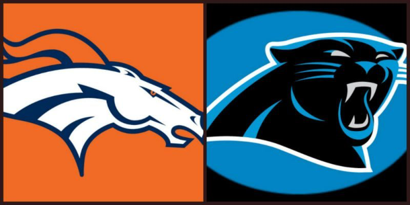 Best punting tips for Broncos vs. Panthers Super Bowl 50 re-match