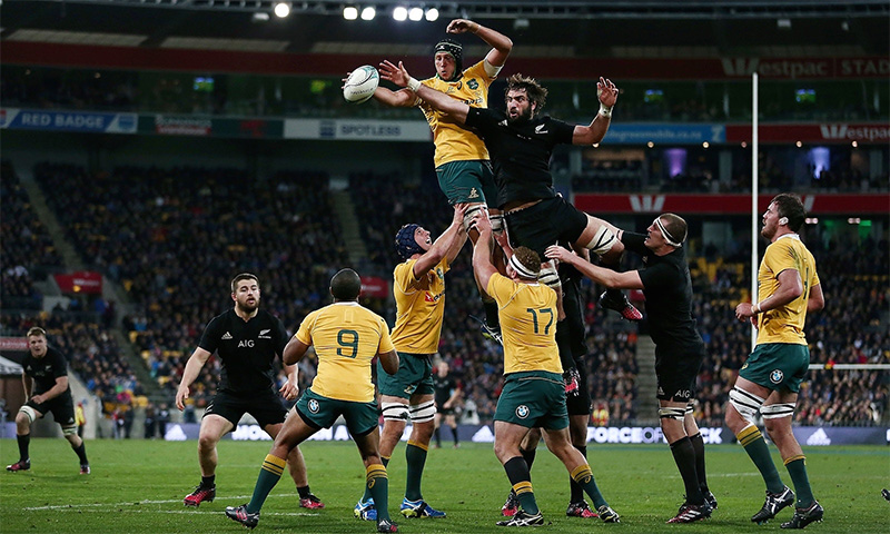Bledisloe Cup Betting
